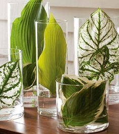 Leaves in vases