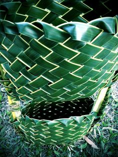 Posts about Coconut palm weaving written by rosalindentree Coconut Leaves, Palm Fronds, Palmiers, Weaving Art, Basket Decoration, Tahiti, Craft Work, Plant Leaves, Projects To Try