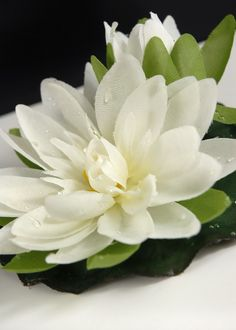 "Floating  4"" Cream White Water Lily  Lotus Flowers (Box of 12)  $21.48/  $1.79 each  - Click to enlarge"