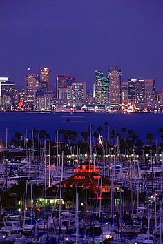 City skyline from Coronado Island, San Diego, California, United States of…