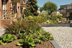 Deze prachtige stapelblokken hebben een ruw uiterlijk, maar u kunt ze netjes verwerken in uw tuin. Zo geeft u uw tuin een luxueuze uitstraling Rock Wall, Plants, Plant, Planets