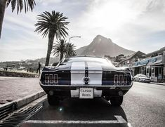 What's better than a vintage muscle car? A vintage muscle car in Cape Town 😎 This is the 1967 Mustang Fastback in its element on Camps Bay Beach front, one of the most popular tourist spots in Cape Town ✨ . 💙 Book it online at: www.classic-rides.co.za 💙 . #car #vintage #capetown #stellenbosch #luxury #franschoek #paarl #southafrica #style #classic #classiccars #bentley #rollsroyce #jaguar #wedding #weddingcar #matricdance #matricball #mustang #musclecar #followforfollowback… 1967 Mustang, Mustang Fastback, Gone In 60 Seconds, Tourist Spots, Wedding Car, Rolls Royce, Cape Town, Muscle Cars, Luxury Cars
