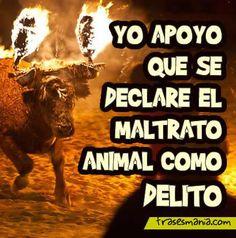 No maltrates, y no te maltratarán Planeta Animal, Dog Friends, Best Friends, Animals And Pets, Cute Animals, Miss My Best Friend, Little Brothers, Stop Animal Cruelty, Mundo Animal