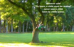 Love this!! Do you climb trees with your children? We do! ;) (Reggio Inspired & Play based learning)