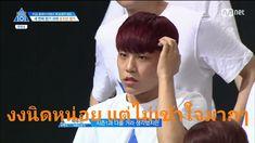 Lai Guanlin, Kpop, Learning, Memes, Funny, Hawaii, Animal Jokes, Study, Meme