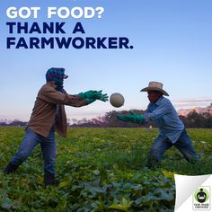 It's National #Farmworker Awareness Week - A time to honor the people who grow our food. Farmworkers are part of a global agricultural workforce more than 1.2 BILLION strong. How can YOU support them? 1.) REPIN this post to educate your friends. 2.) Read the stories of 3 #FairTrade farmworkers who share their struggles, hopes & dreams with you. Get involved here: http://fairtrd.us/1RzLwy0 #nfaw2016 #agriculture