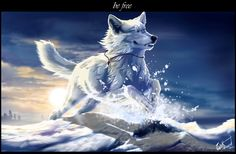 Be free by WolfRoad.deviantart.com on @deviantART