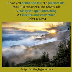 """""""Have you heard and felt the pulse of life That fills the earth, the forest, air A soft quick, quiet breathing An intense and wary stare"""" - John Maling"""
