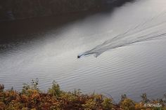 Boat pulling a water skier by opie0429, via Flickr Boats, Water, Gripe Water, Ships, Boat, Ship