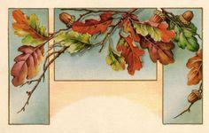 vintage oak acorn - Google Search