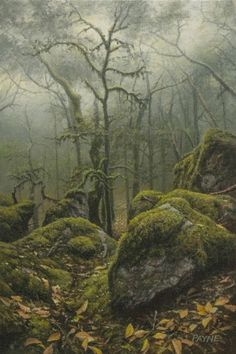 Ironmist — I just want to fall asleep in the forest Magic Forest, Forest Art, Tree Forest, Forest Scenery, Forest Drawing, Forest Painting, Forest Landscape, Fantasy Landscape, All Nature