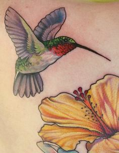 Hummingbirds must be hard cuz I'm having a hard time finding a good tattoo.  Want one with some Columbines