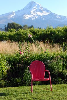 Sit back and soak in Mt. Hood's beauty!