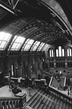 Natural History Museum, South Kensington. Spent plenty of time at the museums, so close to where we lived.  bhk