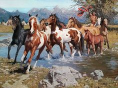 "When horses were introduced to the Indians, they became ""Native Wealth"" for the many purposes they served. As this brave guides his herd across the water, he knows these new horses will contribute to"