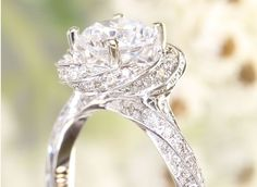 How to Find the Perfect Engagement Ring for your Fiancé Perfect Engagement Ring, Wedding Engagement, Wedding Day, Engagement Rings, Bridal Jewelry, Jewelry Box, Jewellery, Jewelry Knots, Wedding Rings Solitaire