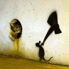 Here kitty kitty...