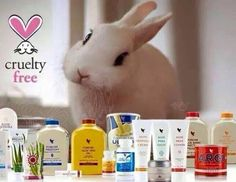 I'm happy to shout out that all Forever Living cosmetics and products are completely cruelty free.. No testing on animals.. ✌#petfriendly #crueltyfree #queenbee #workingfromhome #loveanimals #notestingonanimals louisejackson@flp.com  Shop at louisejackson.flp.com
