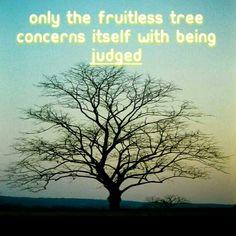 Bare fruit