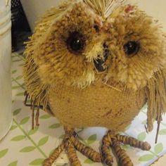 From Broc Mor, Aberystwyth! Called Guto. Aberystwyth, Owl, Teddy Bear, Bird, Animals, Animales, Animaux, Owls, Birds