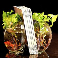 There are some Fancy Fish Bowl Bookends. I might get these just to add a little flair to my office