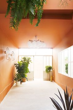 sfgirlbybay / bohemian modern style from a san francisco girl Miami Art Deco, House Plants Decor, Plant Decor, Interior Architecture, Interior And Exterior, Miami Living, Terrazo, Commercial Interiors, Color Themes