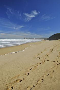 Kasouga Beach Port Alfred South Africa