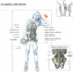 Dumbell Side Bends