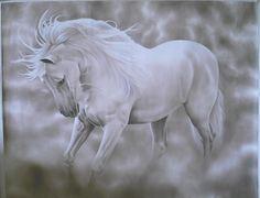Andalusian Horse   ... andalusian horse, animals, horses, iberian horse, spain, spanish horse