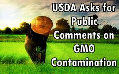 Action Alert: The USDA Wants YOUR Input on GMOs and Farming!