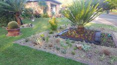Landscaping, Gardens, Plants, Outdoor Gardens, Yard Landscaping, Plant, Landscape Architecture, Garden Design, Garden