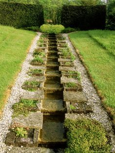 water: a cascading rill, plantings  border centered within a sloping lawn
