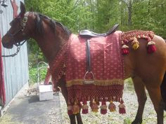 another of my hand made Arabian horse costumes Arabian Horse Costume, Arabian Costumes, Horse Halloween Costumes, Fairy Skirt, Christian Girls, Tribal Fashion, Horse Tack, Show Horses, Vintage Outfits