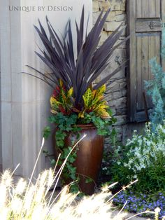 Dracanea, Croton and Ivy. Quite simple and quite striking.