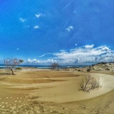 Nothing is more exciting like a framework bringing together: the beauty of the #desert , #sand #dunes and the #sea ... #campingtrip #backpackers #adventures #hikers #hiking #trekking #landscapeslovers #landscapes #travel #instatravel #gopro4black #gopro #goprophotography #naturelovers #wildlifephotography #nature #roadtrip #wanderlust #wilderness #worlderlust #gopro4 #adventureseekers #outdoorswomen