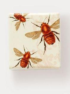 Honey Blossom Bon Bon Lip Balm