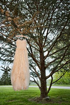 """I'll never forget one of my bridesmaids saying, """"Uh, your wedding dress is outside hanging in a tree!"""" Hehe. Turned out to be a great photo!"""