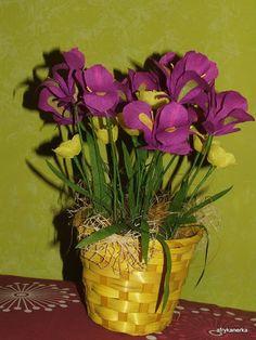 Kwiaty z bibuły - irysy i jaskry