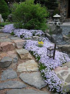 japanischer garten mit ahorn, ziergräsern und steinen verlegen, Gartenarbeit ideen