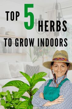 Top 5 Herbs to Grow Indoors. Read our article. #herbstogrowindoors  #plantcare #plantophiles Organic Gardening, Gardening Tips, Indoor Gardening, Subsistence Agriculture, Growing Herbs Indoors, Best Indoor Plants, Grow Your Own Food, Garden Care, Plant Care