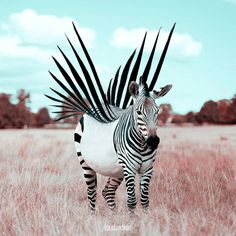 Julian Tabet surrealismo 3