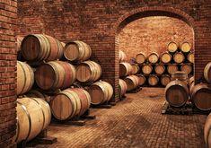 Wine Barrels In Wine-vaults In Order Wall Mural Wine Terms, White Wine Grapes, Wine Vault, Brunello Di Montalcino, Stainless Steel Tanks, Wine Education, Italian Wine, Wine Storage, Restaurant Bar
