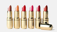 Lucky those who have fair complexion as they can avail maximum range of lipstick shades. If you are searching for a lipstick color guide, here's what you are seeking for. Mauve Matte Lipstick, Best Lipstick Color, Lipstick Palette, Lipstick For Fair Skin, Perfect Lipstick, Brown Lipstick, Natural Lipstick, Lipstick Brands, Best Lipsticks