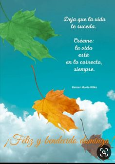 Rainer Maria Rilke, Skeleton Pumpkin, Movie Posters, Frases, Bon Weekend, Images For Good Night, Happy Sunday, Be Nice, Bom Dia