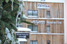 Booking.com: Hotel Andino , Sankt Anton am Arlberg, Österreich - 65 Gästebewertungen . Buchen Sie jetzt Ihr Hotel! Das Hotel, Wreaths, Plants, Decor, Decoration, Door Wreaths, Deco Mesh Wreaths, Plant