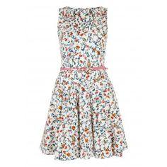 Closet Bloomsbury Owl Print Flared Belted Skater Dress - Skater Dresses - Dresses - Clothing