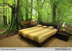 Zawsze marzyłam, aby właśnie tak wyglądał mój pokój..♥ Eh.. marzenia .. ;(
