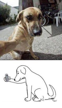 Dog selfie…I gotta teach Missy this trick!