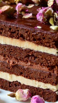 Opera Cake Recipe ~ It tastes amazing!