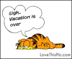 Sigh Vacation Is Over quotes quote garfield vacation quotes garfield quotes cartoon quotes quotes with cartoons vacation is over quotes quotes about vacation funny garfield quotes Post Vacation Blues, Vacation Is Over, Mini Vacation, Back To Work Quotes, Over It Quotes, Garfield Quotes, Garfield Cartoon, Vacation Humor, Vacation Quotes